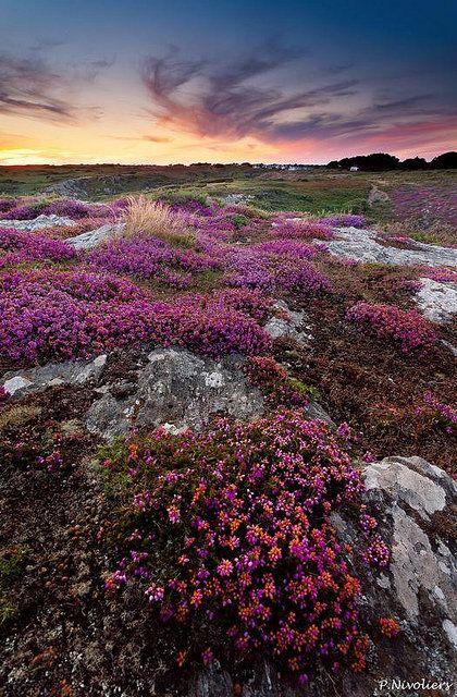 Ile de Groix, Morbihan. Bretagne. Brittany. Photo by Pierre Nivoliers.