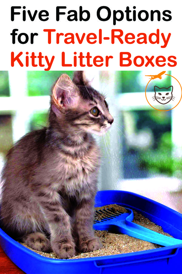 Five Fab Options For Travel Ready Cat Litter Boxes Cat Travel Litter Cat Litter Box Litter Box