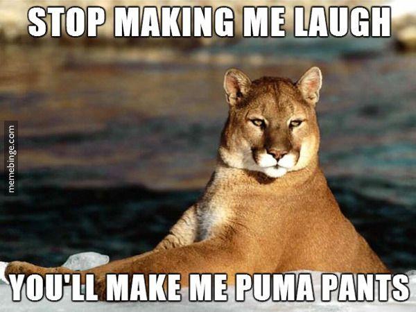 Stop making me laugh.  You'll make me puma pants!