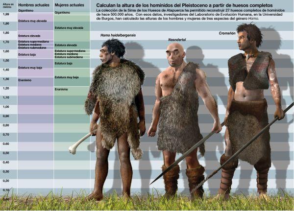 Los humanos de la Sima de los Huesos (Atapuerca) crecían de una forma diferente – Arqueologia, Historia Antigua y Medieval - Terrae Antiqvae