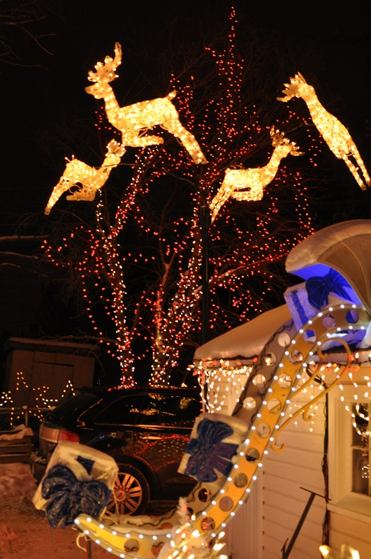Christmas in Edmonton,  Alberta, Canada