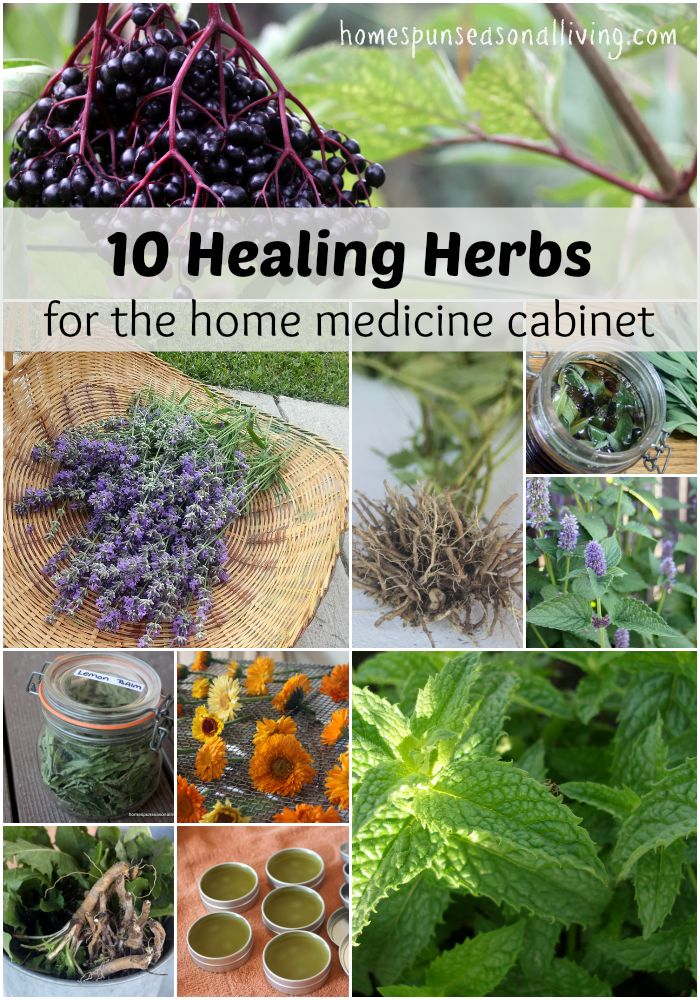 10 healing herbs that are simple to use and find for the home medicine cabinet.