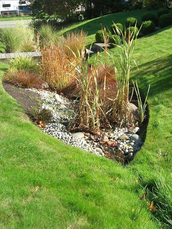 25 best ideas about rain garden on pinterest rock border landscaping around house and flat. Black Bedroom Furniture Sets. Home Design Ideas