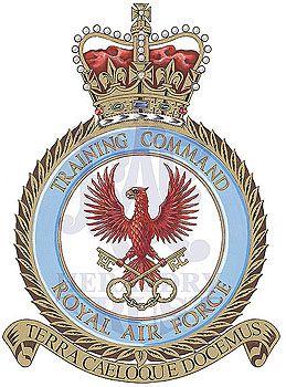 Training Command.jpg (259×350)