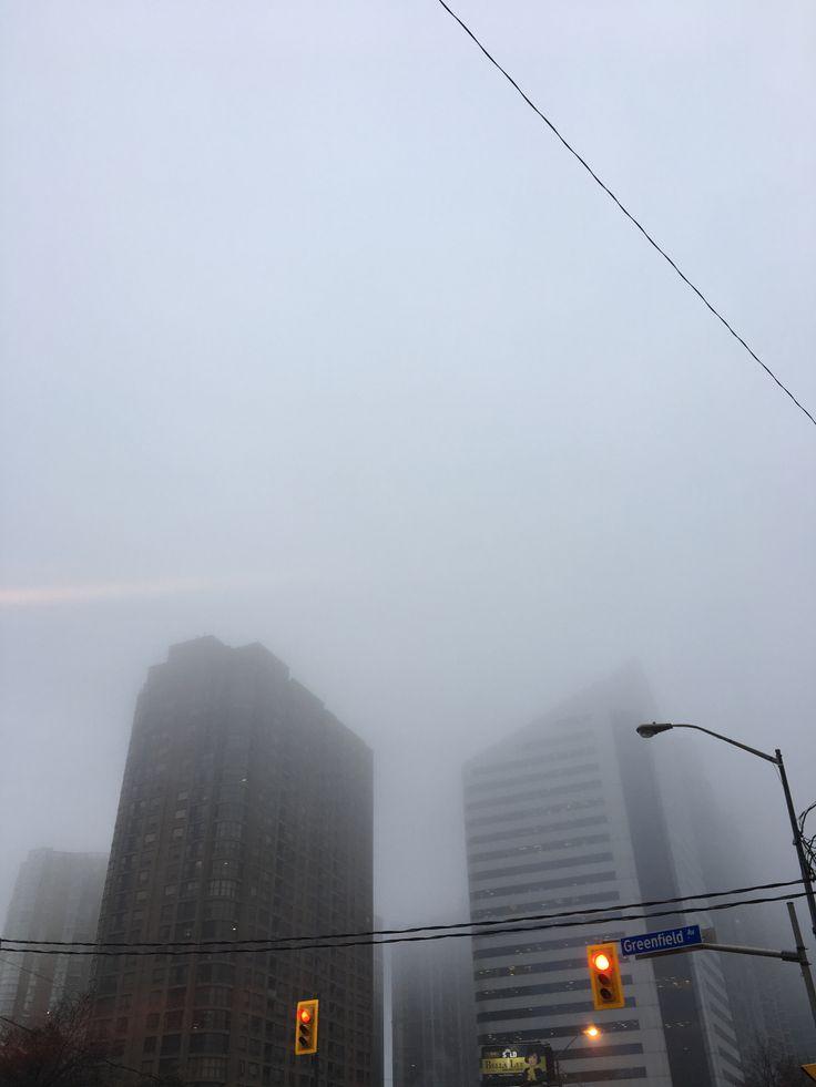 asleep in the mist