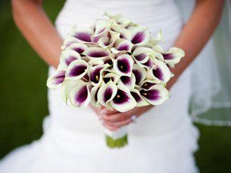 Bouquet de Calas Bicolor -- Fotografía: Erin Volante