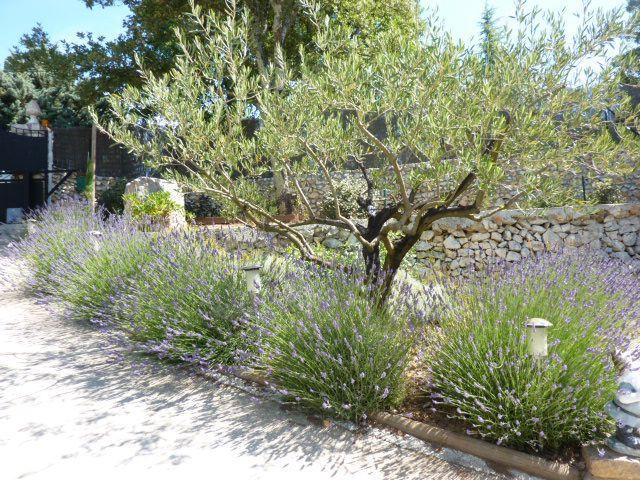 607 best jardin sec images on pinterest backyard ideas gardening and landscaping ideas. Black Bedroom Furniture Sets. Home Design Ideas
