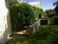Bamboo Down Under » Timor Black - Bamboo Down Under