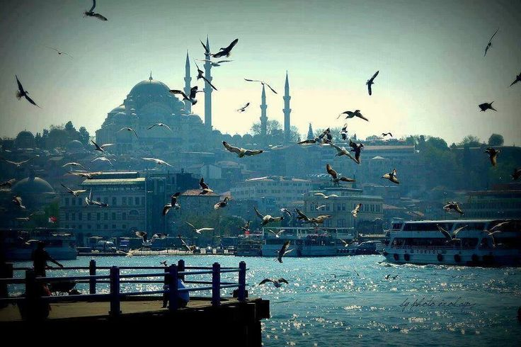 the beautiful city of Istanbul