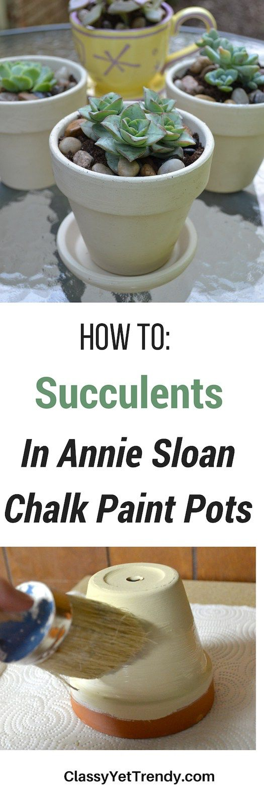 How To: Succulents In Chalk Paint Pots - tutorial on how to paint terra cotta pots with Annie Sloan Chalk Paint & how to plant succuluent plants.