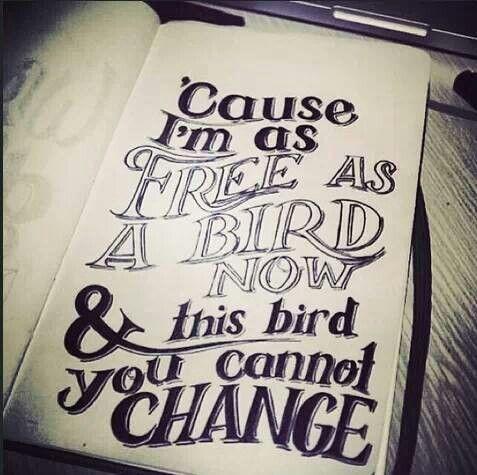 I Am Free Bird Avalon Pintuck Blouse ...