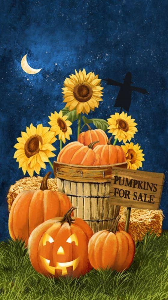 Pumpkins for Sale Panel by Northcott Fabrics #Northcott