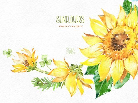 Sunflowers Wreaths Bouquets Watercolor Flowers Clipart Etsy