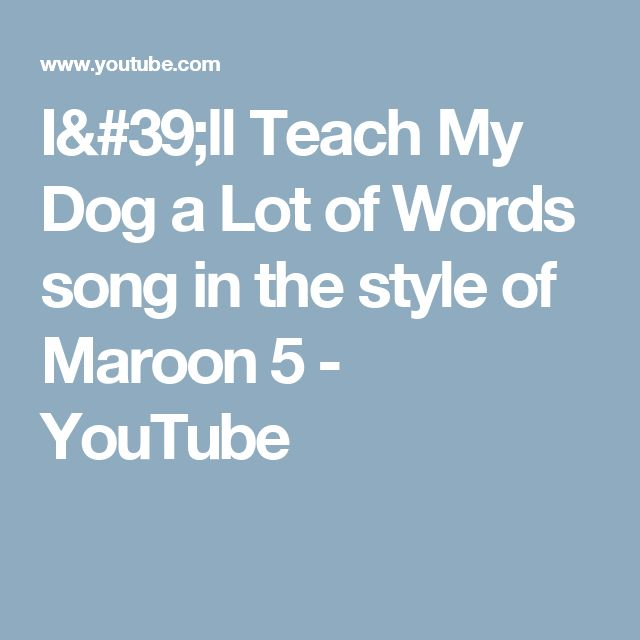 I'll Teach My Dog a Lot of Words song in the style of Maroon 5 - YouTube
