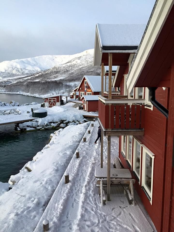 Our seaside cabins in wintertime! ©Linda Hsieh