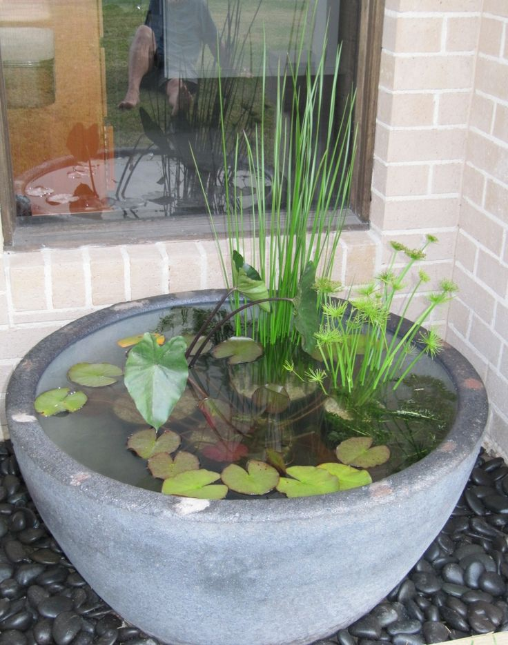 Water feature pot, would be lovely by the front door with some fish in it