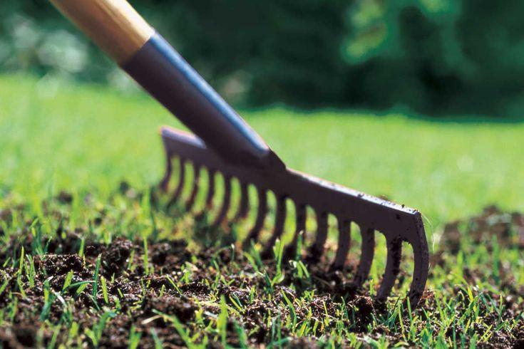 Skal du efterså eller plante nyt græs? Inden du går i gang, er der nogle ting, du skal have på plads. Se vores tips til, hvordan du giver græsset en god start.