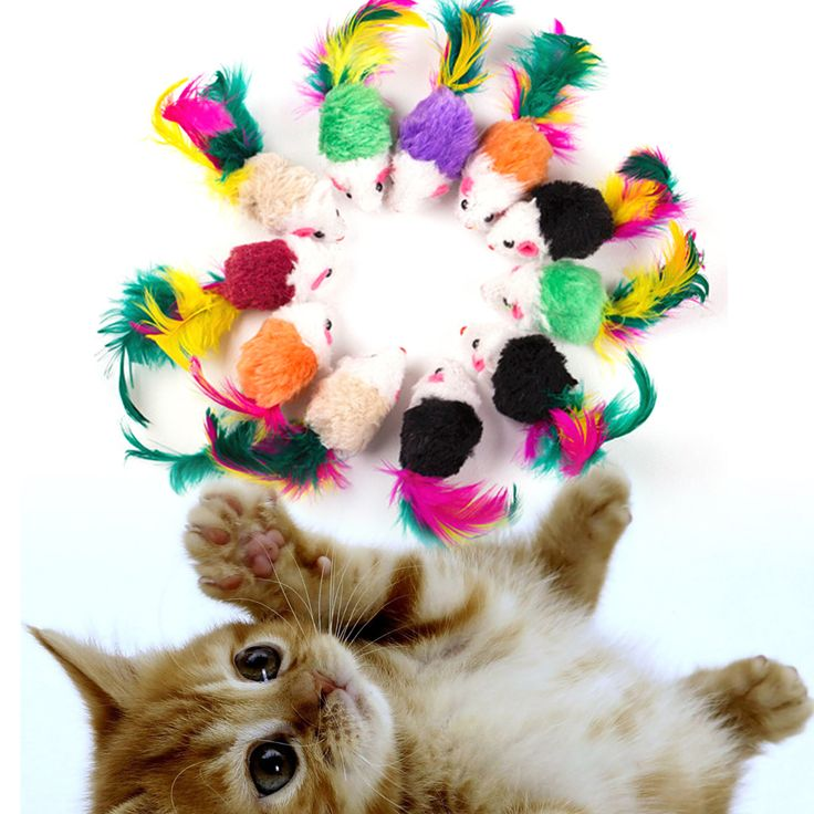 10 Pcs/set Funny False Mouse Rat Toys for Cat Kitten Colorful Plush Mini Mouse Toys Pets Cat Playing Toy FULI // FREE Shipping //     Buy one here---> https://thepetscastle.com/10-pcsset-funny-false-mouse-rat-toys-for-cat-kitten-colorful-plush-mini-mouse-toys-pets-cat-playing-toy-fuli/    #catoftheday #kittens #ilovemycat #lovedogs #pup
