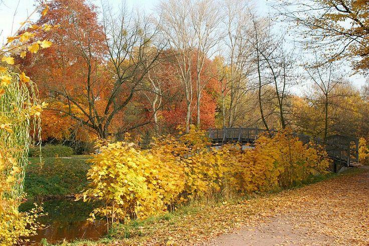 Stadtpark Rotehorn in Magdeburg