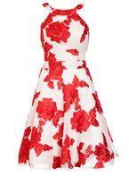 Womens *Quiz Red And Cream Flower Applique Prom Dress- Multi