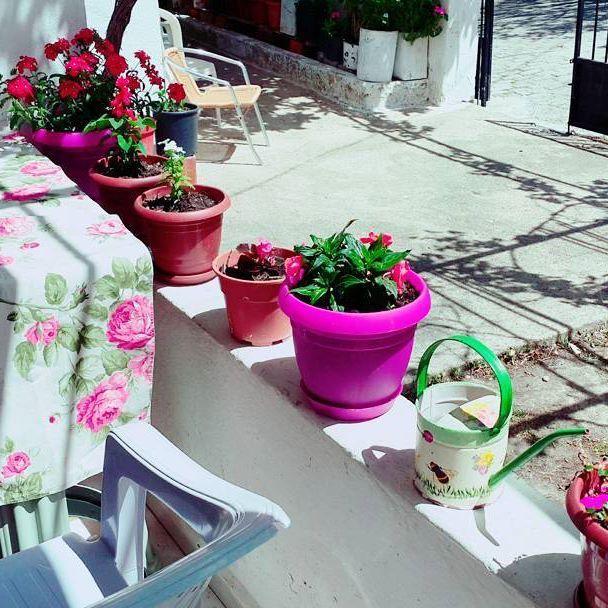 #balkonsefasi hava güzel çiçekler daha güzel