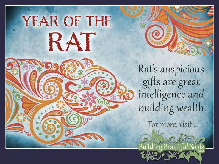 Chinese Zodiac Rat years are 1948, 1960, 1972, 1984, 1996, 2008, 2020. Get in-depth info on the Year of the Rat traits & personality!