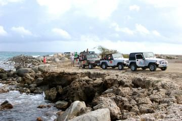Discover the real Aruba in this full-day off road adventure. Travel down dirt roads and rocky tracks while visiting Aruba's most beautiful sites. Be your own driver in a four-wheel-drive automatic Jeep. A day not to be missed!  View more tours in Aruba at: http://ow.ly/UOkc6