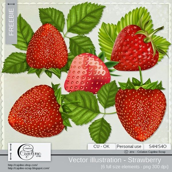 CAJOLINE-SCRAP: Freebie - Vector illustration strawberry CU