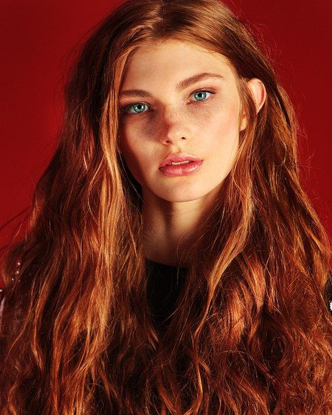 Pics Shorthair ashley redhead hairy teen