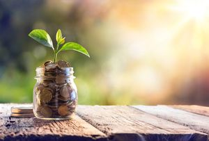 Why Investing in Early Childhood Education Pays Dividends