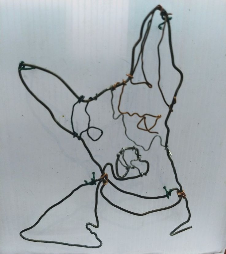 I'm famous, my very own sculpture #dog #dogs #art #wire #sculpture #artst