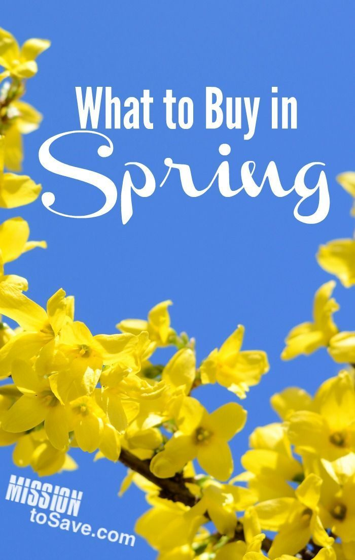 7 best freebies images on pinterest free printable frugal and what to buy in spring to save money fandeluxe Choice Image