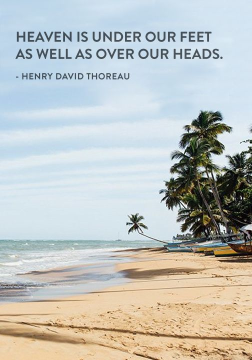 """Heaven is under our feet as well as over our heads."" — Henry David Thoreau"