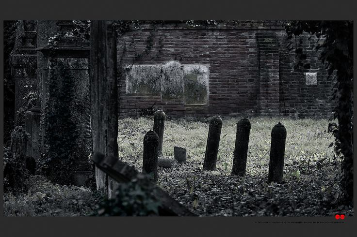 https://flic.kr/p/B38wRH | Autumn at the Jewish cemetery in Ferrara | © This photo is copyrighted by the photographer and may not be used without permission.