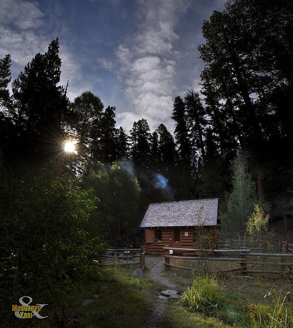 Homeintheforest the aspen cabin oregon by musgrove and for Cabins near portland oregon