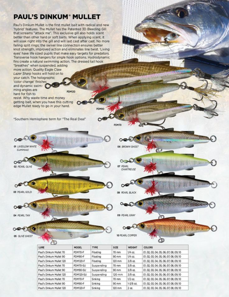 8 best unfair lures images on pinterest bass fishing for Jig fishing techniques