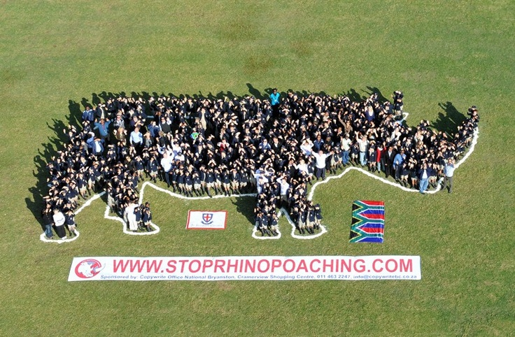 Join a necessary movement and help spread the word that action must be taken to STOP RHINO POACHING before its too late!