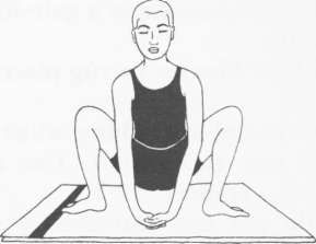 58 best images about basic yoga asanas for beginners on