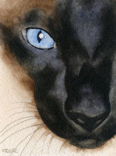 SIAMESE CAT Watercolor Signed Fine Art Print by by k9artgallery