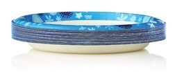 Dixie Plates from The Christmas Tree Shops $2.49 (17% Off) -