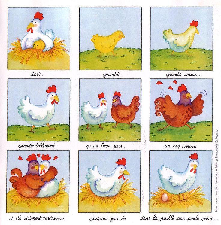De kip en het ei, cyclus - et de l'œuf à la poule !