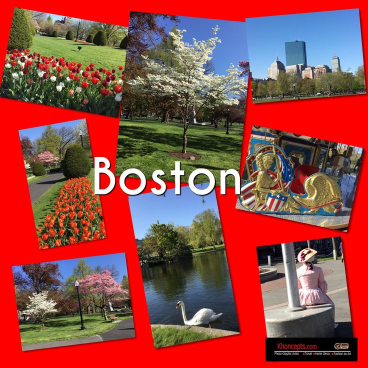 My Spring photos of Boston, MA,  Public Garden and in town