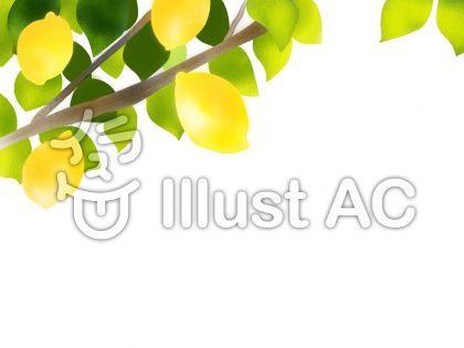 檸檬(レモン)イラスト
