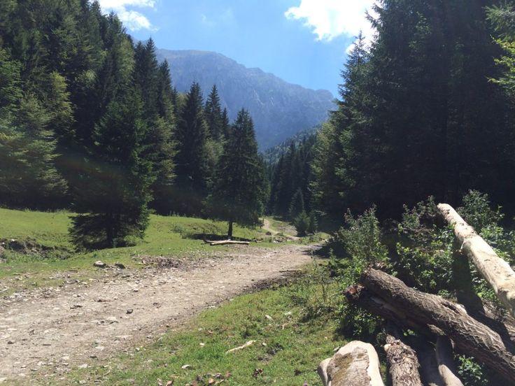 Hiking in Piatra Craiului