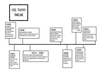 cell theory timeline worksheet resultinfos. Black Bedroom Furniture Sets. Home Design Ideas