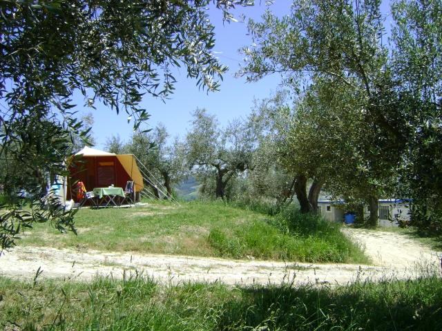 Farm camping Pescara in Abruzzo Italy, looks so peaceful!