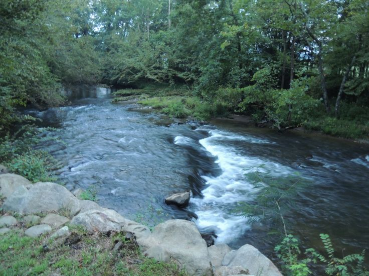 89 best images about smoky mountain falls cabin rentals in for Fishing cabins in tennessee