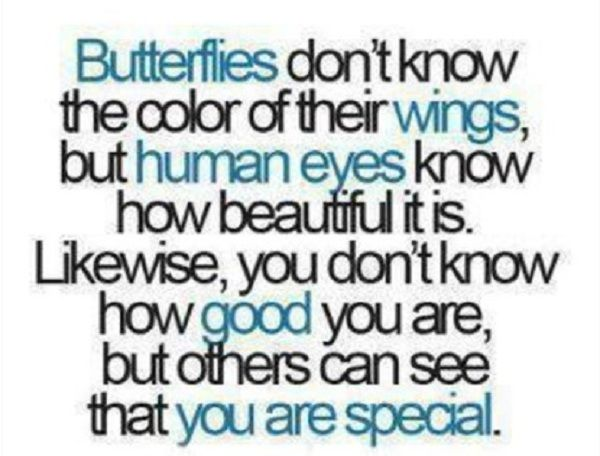 You Are Special Quotes 41 Best Nice Quotes C Images On Pinterest  True Words Truths And .