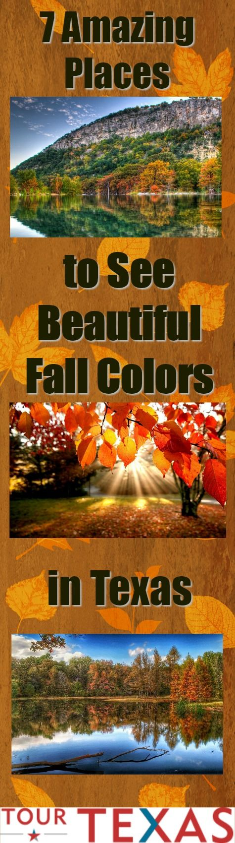 There are so many places in Texas to view Autumn's splendor. Here are just a few...  https://www.tourtexas.com/articles/60/7-amazing-places-to-see-beautiful-fall-colors-texas