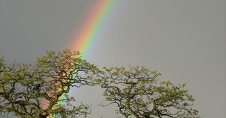 Cómo hacer un arco iris en el salón de clases. Uno de los fenómenos naturales más hermosos es el arco iris. Los arco iris aparecen cuando la luz solar se refracta a través del agua de la atmósfera. Por este motivo, pueden verse después de que llueve. La luz solar parece blanca pero está compuesta de distintas longitudes de onda de luz que vemos como colores. Los colores del arco iris son el ...